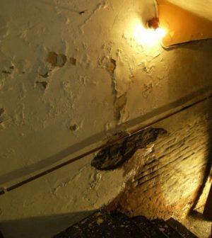 probleme-humidite-cave