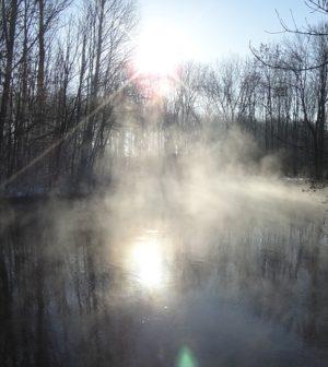 étang en hiver où l'on peut pecher la carpe