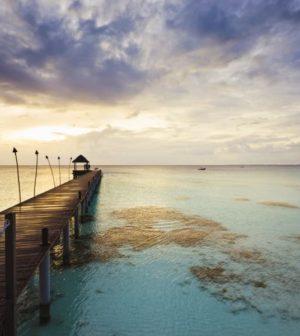 mer en polynesie