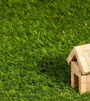 maison en carton sur de l'herbe