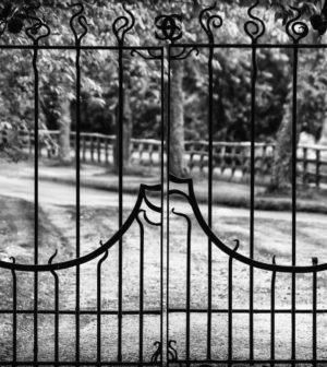 le charme d'un portail en fer forgé
