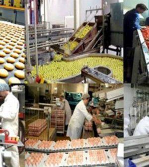 secteur agroalimentaire