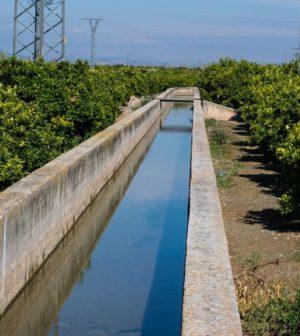 Fosse septique toutes eaux ou micro-station d'épuration : comment choisir?