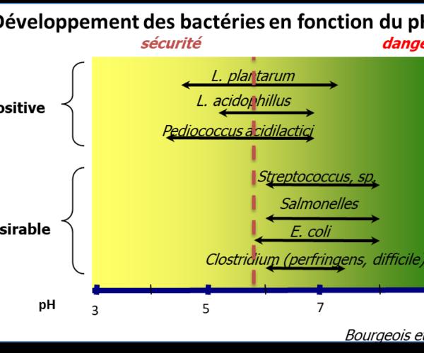 développement des bactéries en fonction du pH