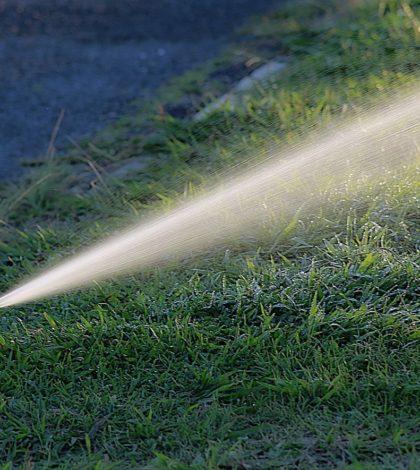 Arrosage de jardin avec un récupérateur d'eau de pluie