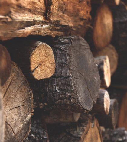 Classement des meilleurs bois pour votre poêle à bois