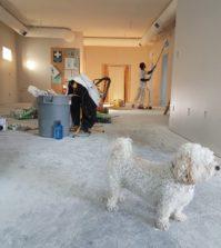 Rénover une maison en 5 étapes