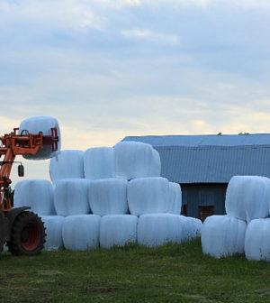 plastique agricole