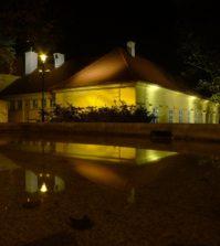 projecteur pour illuminer votre jardin