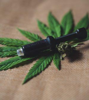 différence entre cannabis et CBD